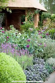 Flowers Irvine California - 402 best gardens u0026 landscaping 2 images on pinterest gardens