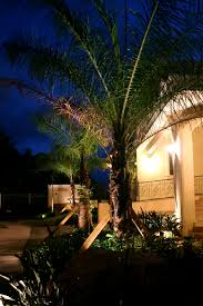 Outdoor Up Lighting For Trees We Love Our Snowbird Customers Here At Outdoor Lighting