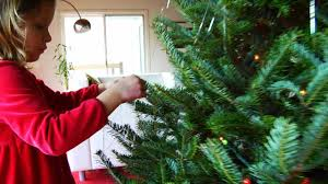how to hang garlands u0026 tinsel on a christmas tree howcast the