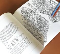 anatomy coloring book download show me your guts an artistic u0026 anatomical coloring book for