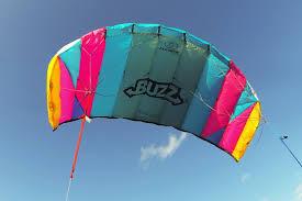 amazon com flexifoil 1 45m 2 line buzz power kite with 90 day by