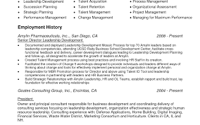 sample overview for resume charming resume summary examples