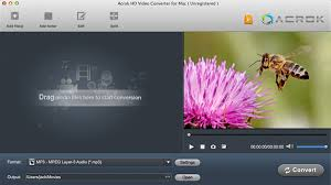 converter raw raw video converter convert 6k 5k 4k rew files