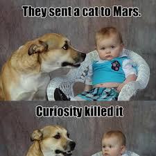 Pun Dog Meme - mars dad pun dog by nick zoum meme center