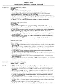 resume templates word accountant trailers plus peterborough portfolio analyst resume sles velvet jobs