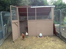 requesting pictures how to keep goats out of my coop backyard