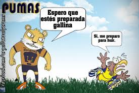 Memes De Pumas Vs America - pumas vs america por pumitadf anti america fotos de pumas unam