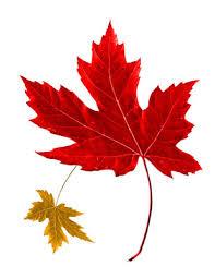 my ochs canadian thanksgiving