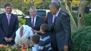 obama makes thanksgiving turkey pardon