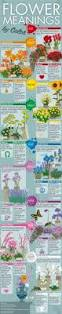 flower meanings by color feng shui color infographics tao