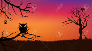orange black halloween background halloween evening vector background with black cat and bare