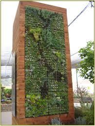 vertical succulent garden home design ideas