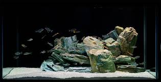 Aquascape Design Aquascaping Techniques From Beginner To Advanced Home Aquaria