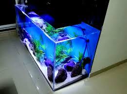 designer aquarium resonating simplicity madoverfish aquariums water arts company