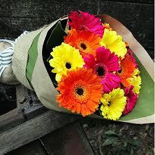 gerbera bouquet joyful gerberas