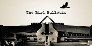 the bird bulletin vol 16 birdlife