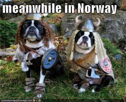 Norway Meme - meanwhile in norway meme city