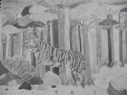 a tiger in the forest drawing cinomann17 2017 jul 31 2011