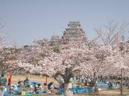 Flowers In Japanese Culture - hanami wikipedia