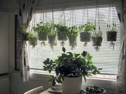 garden ideas wonderful small kitchen with hanging herbs