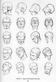 Anatomy Of Human Body Sketches Best 25 Face Anatomy Ideas Only On Pinterest Anatomy Reference