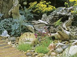 best 25 coastal gardens ideas on pinterest coastal landscaping