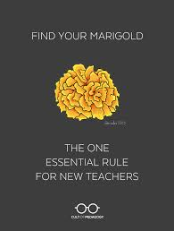 Marigolds Shade by Find Your Marigold The One Essential Rule For New Teachers Cult