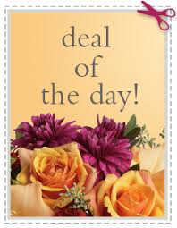 Affordable Flowers - deal of the day bouquet at affordable flowers in royal oak