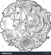portrait horse clouds flowers coloring page stock vector 420841198