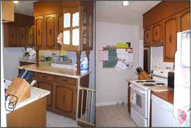 rona kitchen cabinets