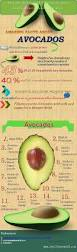 avocado superfood 15 proven health benefits of avocado with