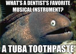 Tuba Memes - tuba squad entertainment the tuba squad instagram profile picbear