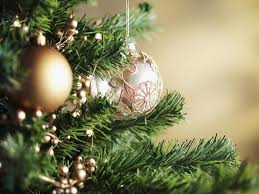 christmas trees on sale christmas trees for sale at fairfax high school fairfax city va