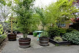 wildly whimsical barrel planter ideas garden lovers club