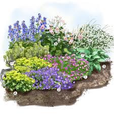 plante vivace soleil projet aménagement jardin les vivaces fleuries au jardin