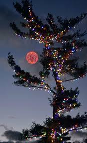 charlie brown christmas lights charlie brown christmas tree feelingood me