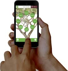 field testing the new tree id app card