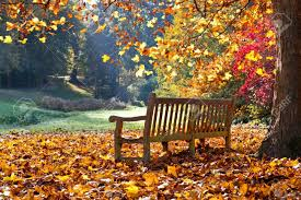 park bench stock photos u0026 pictures royalty free park bench images