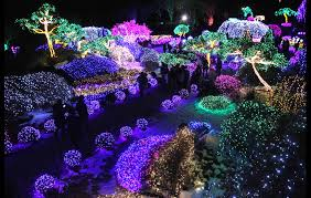 17 best places for holiday lights viewing in new york and new