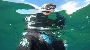 Washington snorkeling images Freediving 2016 washington state jpg