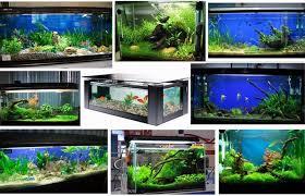 30 led aquarium light 30cm 40cm 60cm 90cm led aquarium lighting fish tank l white blue