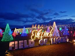 santa rosa christmas lights look magical field of lights in nuvali is the perfect christmas treat