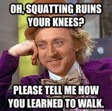Squat Meme - the squat meme wholistic revolution