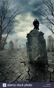 graveyard with crow at night halloween concept stock photo