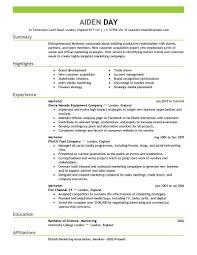 chronological resume minimalist design concept statement exles resume summary marketing exles therpgmovie