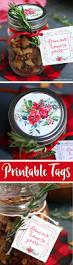 best 25 diy jar gifts for christmas ideas on pinterest diy