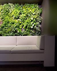 Garden Bathroom Ideas by Minimalist Indoor Garden Minimalist House Indoor Garden Bathroom