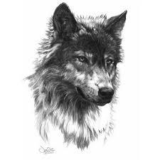 grey and black wolf design