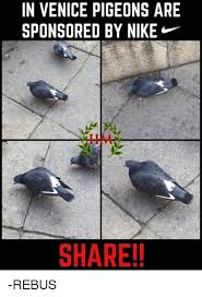 Nike Meme - in venice pigeons are sponsored by nike share rebus meme on
