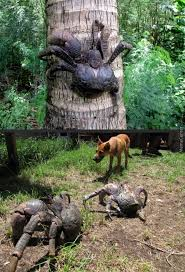 Huge Spider Memes Image Memes - coconut crab spider with armor crab spider spider crab i don t